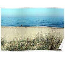 Les Basses d'en Coll (arrossars, dunes i aiguamolls de Pals) Poster