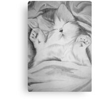 sweet dream Canvas Print