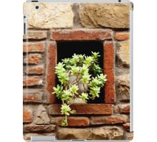 A Plant in the Wall iPad Case/Skin