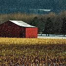 Snowy Red Barn In Winter by Lois  Bryan