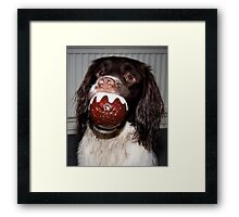 Busters Pudding Framed Print