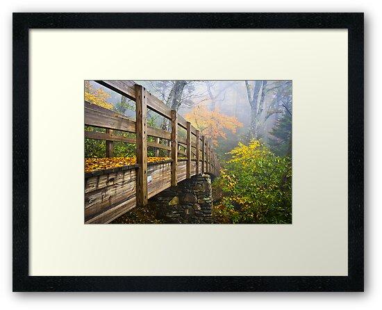 Tanawha Trail Foot Bridge - Rough Ridge Autumn Foliage NC by Dave Allen