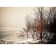 A foggy January morning Photographic Print