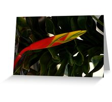 RED YELLOW AND A TOUCH OF GREEN Greeting Card