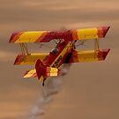 Skyward! by gfydad