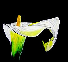 Calla by Leeanne Middleton