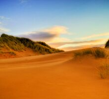 Balmedie Beach by Don Alexander Lumsden (Echo7)