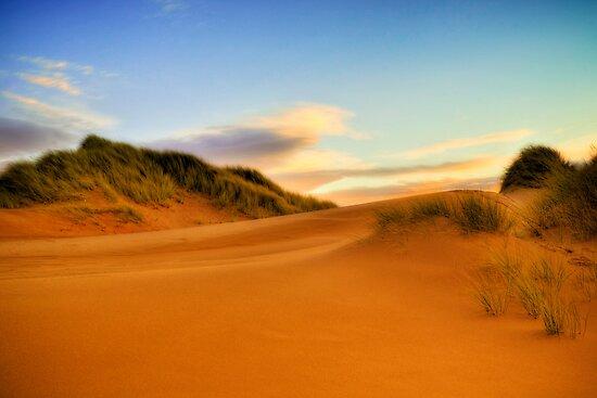 Balmedie Beach by Don Alexander Lumsden (Echo7)