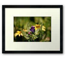 Another Dimension of Raw Framed Print