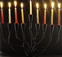 Happy holidays! by karenabitbol