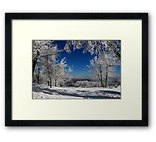 Blue Knob Framed Print