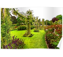 Impressions of London – Queen Mary's Garden at Regent's Royal Park Poster