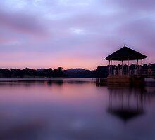Dreams by Mark Lee