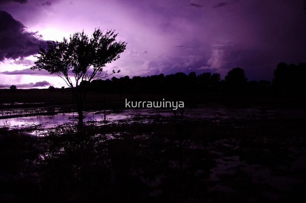 Plum lightning by Penny Kittel
