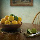 Citrus by Luis Ferreiro