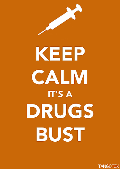 Keep Calm, Its A Drugs Bust by thetangofox