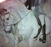 """Andalusian in the Limelight"" by Belinda Baynes"