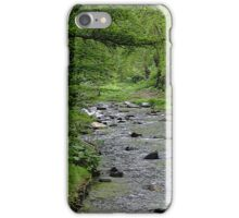 Art in the Forest iPhone Case/Skin