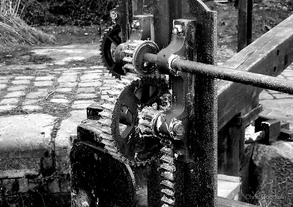 Lock Gate Cogs by Chris Goodwin
