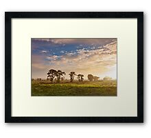 Glastonbury Trees and Mist Framed Print