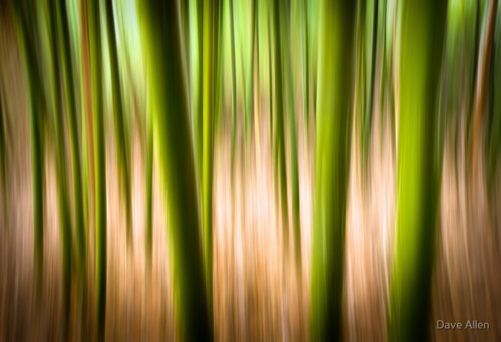 Vitality - Abstract Panning Bamboo Landscape Photography by Dave Allen