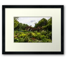English Cottage Gardens - Summer Green in Watercolor Framed Print