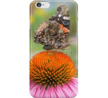Red Admiral butterfly iPhone Case/Skin