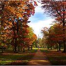 Autumn Colours by sbarnesphotos