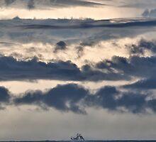 Shrimp Boat and Sky by jimcrotty