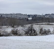 A Dusting Of Snow by Tracy Faught