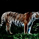The Midnight Tiger by Fisher