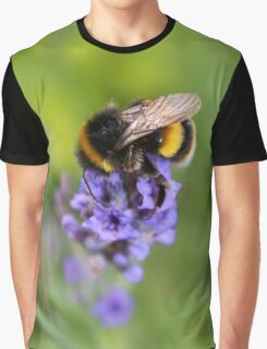 Lavender Visitor Graphic T-Shirt