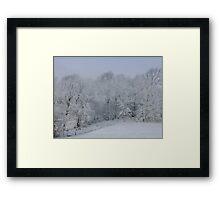 Winter Wonderland! Framed Print