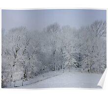 Winter Wonderland! Poster