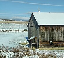 The old barn in the snow by vigor