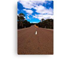 lake highway Canvas Print