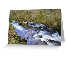 Dartmoor: The River Taw in Belstone Cleave Greeting Card