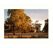The Golden Time Of Day Art Print