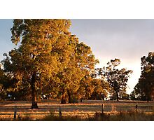 The Golden Time Of Day Photographic Print