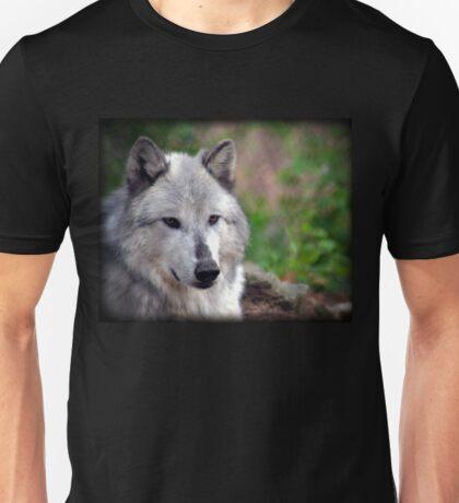 Gray Wolf-167 Unisex T-Shirt