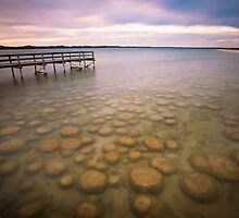 Lake Clifton Thrombolites by Peter Hodgson