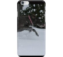 Molly Dog iPhone Case/Skin