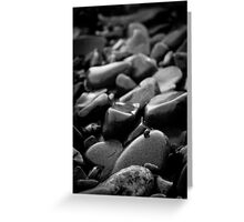 Pebbles and Snail Greeting Card