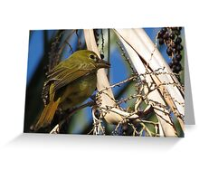 Summer Tanager ~ Female Greeting Card
