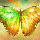 """Butterfly 4 (from """"Butterflies"""" collection) by EvaMarIza"""
