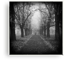 Fog. Canvas Print