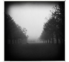 Fog. II Photographic Print