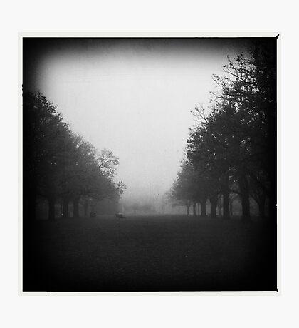 Fog. II Photographic Print