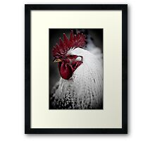 Whaddaya Chicken? Framed Print
