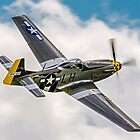 "P-51D Mustang G-MSTG ""Janie"" by Colin Smedley"